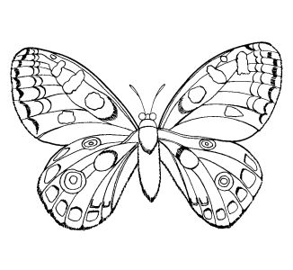 Here Are The Top Coloring Pages For Girls My Kids Could Color A Page All Day Long Every Christmas 1