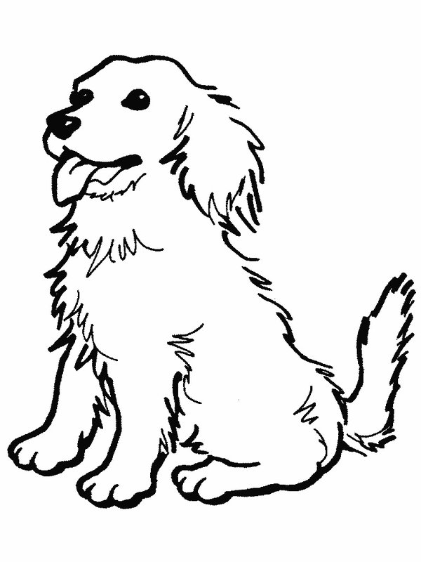 Dog Coloring Pages Z31