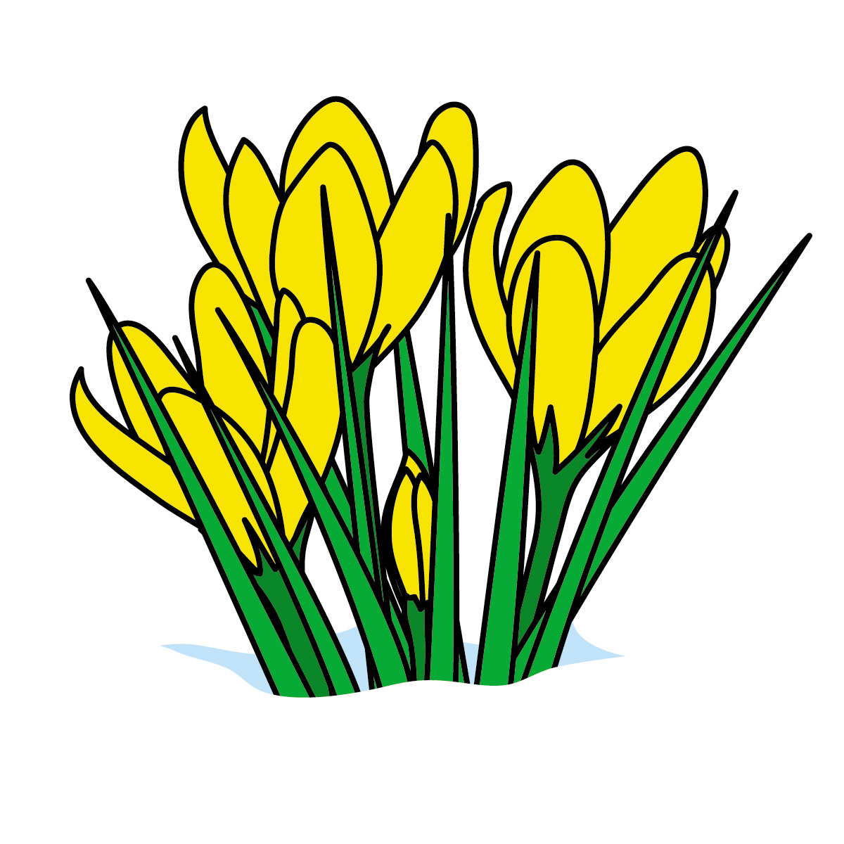 flower clip art color - photo #29