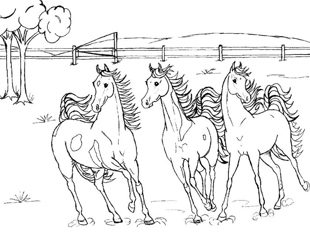 Horse Coloring Pages Z31 Coloring Page