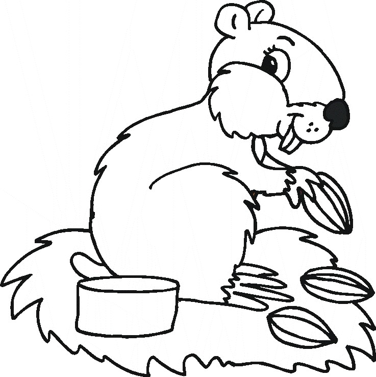 coloring pages angry birds coloring pages superman coloring pages