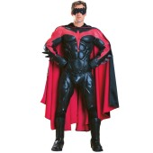 Collectors Robin Adult Costume
