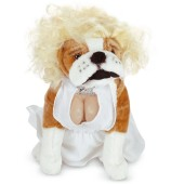 Silver Screen Starlet Pet Costume