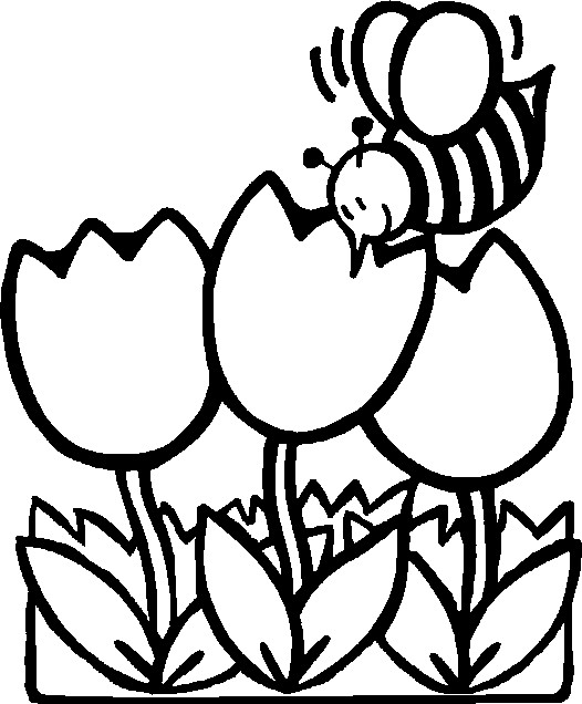 Fall Coloring Pages Flowers Coloring Coloring Pages