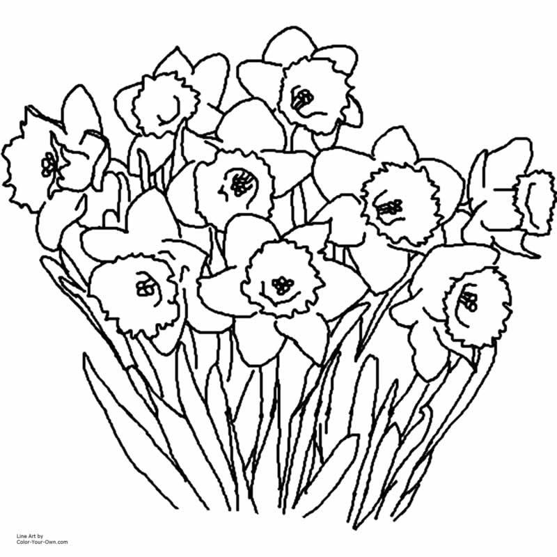 Spring Coloring Pages 2018 Z31 Page